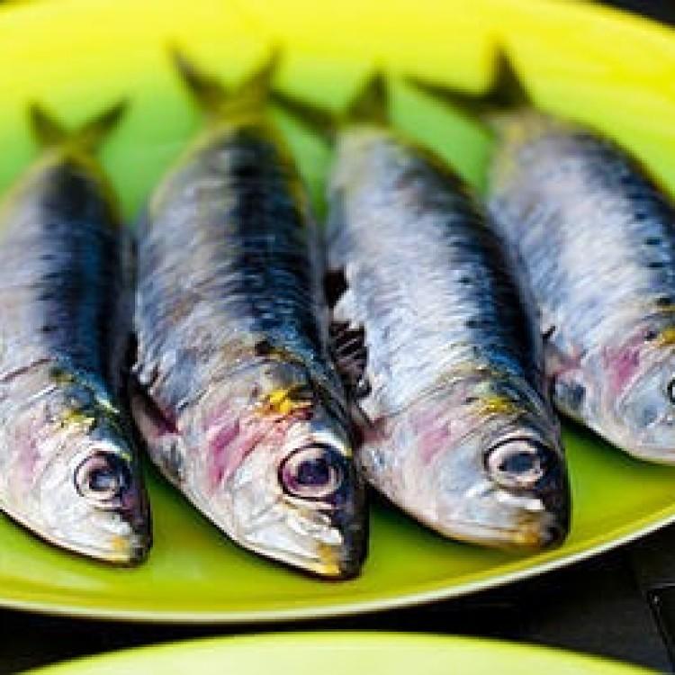 مصرف ماهی ساردین ، تحریک کلیه های سنگ ساز